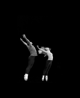 Merce Cunningham / CNDC d'Angers - How to Pass, Kick, Fall and Run / Inlets 2 / Beach Birds